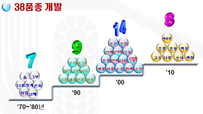 38품종.png